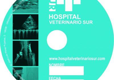 diseño CD-DVD HVS 2017