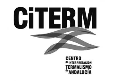 CITERM